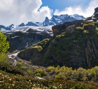 Акбекские пики на фоне цветущих рододендронов