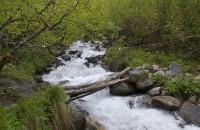 Мостик через ручей на пути к Алибекскому водопаду