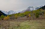 Домбай сегодня: снежку немного подсыпало - фото 3 - увеличить