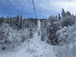 Хорошие новости: гондольная канатка заработала, снега много, даже на «лесной» трассе - фото 3