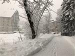 В Домбае выпало метр снега. «Шестикреселку» временами закрывают из-за погоды, можно катать по «лесной»... - фото 3
