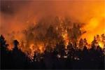 Большая беда: горят леса в Домбае и окрестностях - фото 1 - увеличить